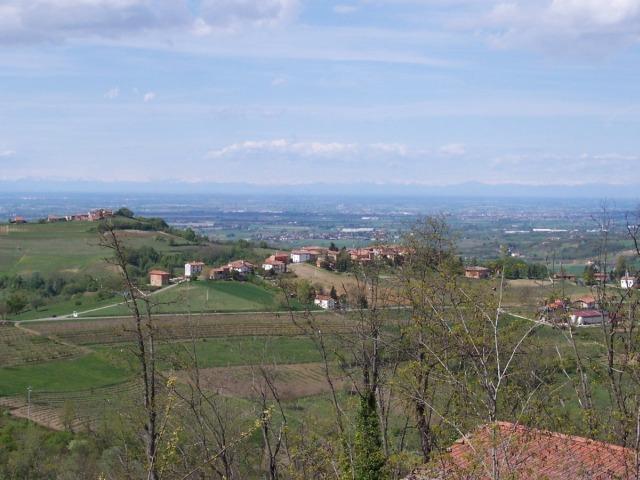 tortonese_201233