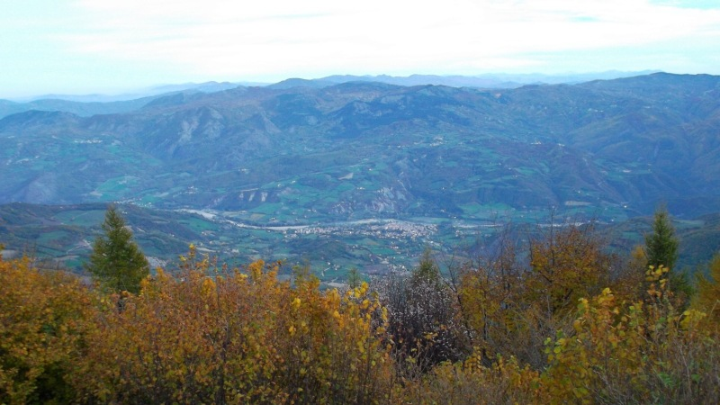 penice_autunno 002