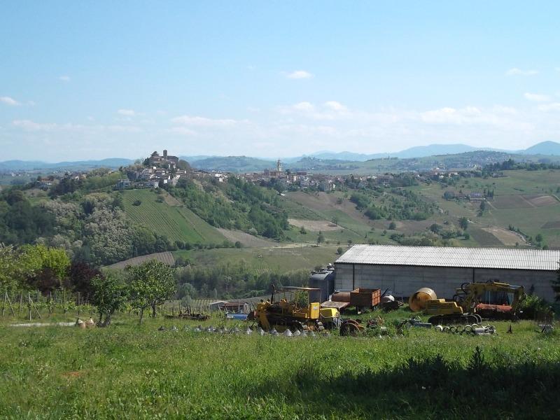 10colli_viticoli 095